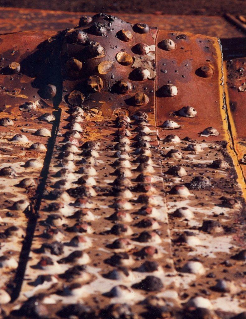 Skin I_1995