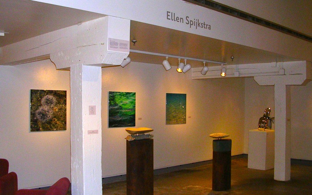 Island Reflections: the Art of Curaçao, DePree Art Center, Holland, Michigan, USA,  2011