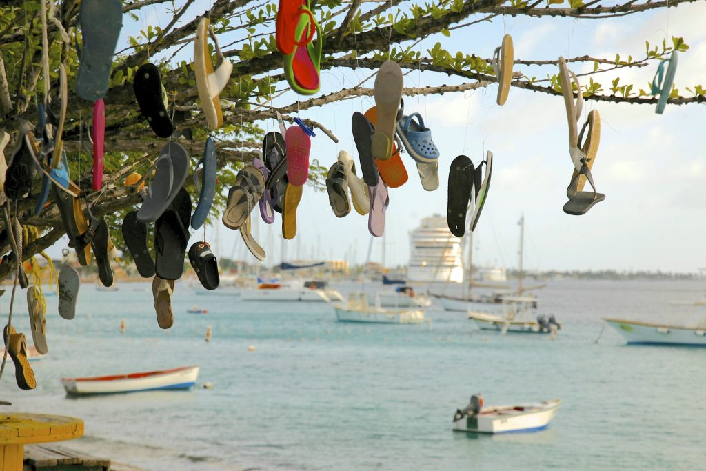 Caribbean Harbor Tour 7, 2014