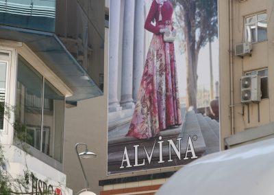 Miss Alvina_IMG_6683